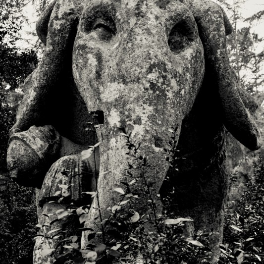 Tivoli, agosto 2013 © Olivier Favier.