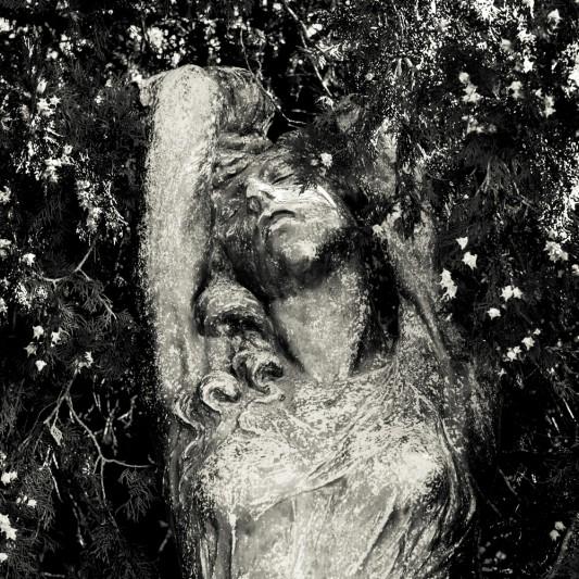Cimitero di Pavia, agosto 2013 © Olivier Favier.