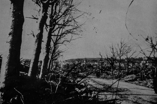 """Le Boulevard François Ier.  Photo: W. Beaufils. InPierre Aubery, """"le siège et la bataille du Havre (1er au 12 septembre 1944) d'après des documents anglais"""", in Études normandes, Livraison 12 N°39 3 trimestre 1954 ."""